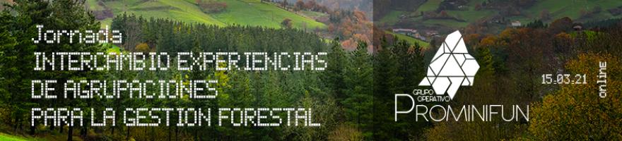 """Jornada """"Intercambio de experiencias de agrupaciones para la gestión forestal"""""""